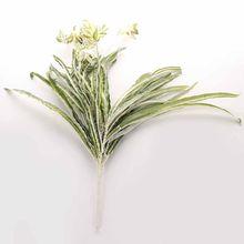 Искусственный хлорофитум настенные Висячие растения садовое украшение для дома Имитация цветка для сада/дома балкон(Китай)