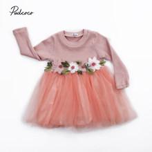 3-24M נסיכת יילוד תינוקות תינוק בנות שמלת תחרה פרח טוטו טול מפלגה שמלות עבור תינוק בנות יום הולדת תינוק תלבושות סתיו(China)