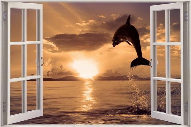 Livraison gratuite 3d fen tre dolphin exotique paysage for Insonoriser fenetre