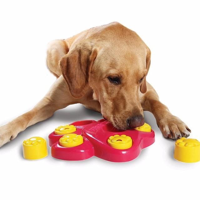 Dog Treat Toy P