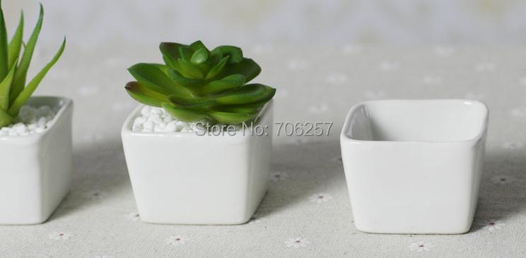 Beautiful Ceramic Pots For Indoor Plants Images - Amazing Design ...