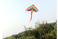 High Quality Triangle Rainbow Kite Outdoor Fun Sports Toy Kite Fly a Kite
