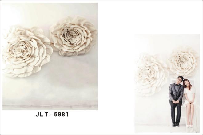 300*500cm  Vinyl Muslin Photography Backdrops Prop  Wedding Dress  Background JLT-5981<br><br>Aliexpress