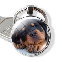 Jóia do cão Shiba Inu Cão Bonito Chaveiro Foto Cabochon Vidro Pingente Anel de Metal Saco Chaveiro Pingente Presente Do Amante Do Cão(China)
