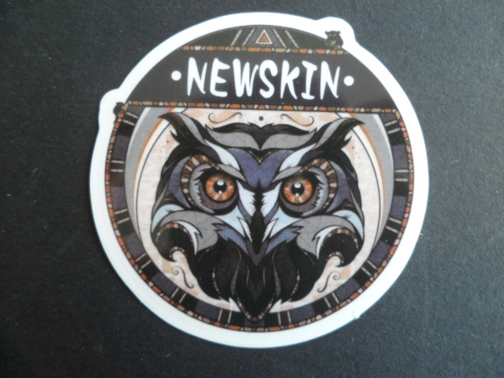 Free shipping transparency  waterpoof UV proof,laptop sticker  ,night owl,a bird of Minerva,Noctua<br><br>Aliexpress
