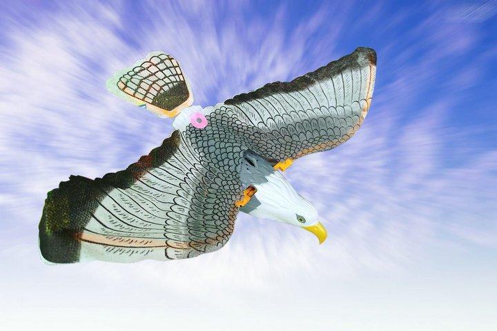 lectrique aigle jouet planant grue volante aigle 360 volant avec clignotant et sonore si. Black Bedroom Furniture Sets. Home Design Ideas