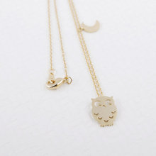 Daisies 1pc New Fashion Pendant Necklace Owl Night Crescent Moon Hoot Birds Animal Necklaces For Women Jewelry Collier Femme(China (Mainland))