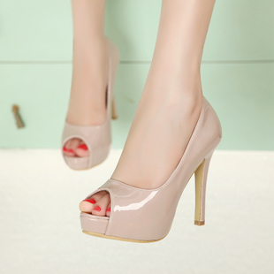 HOT Fashion Sexy Womens Shoes Peep Toe Pumps For Woman Sandals Spring Autumn High Heels(China (Mainland))