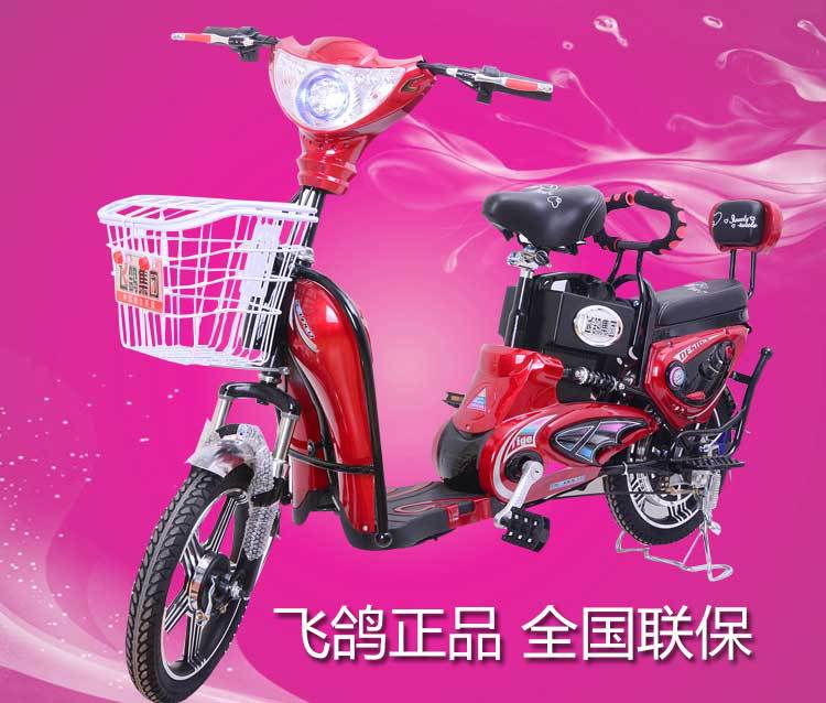 tb02 Genuine electric car bike electric bicycle Golden Jasmine Deluxe Edition
