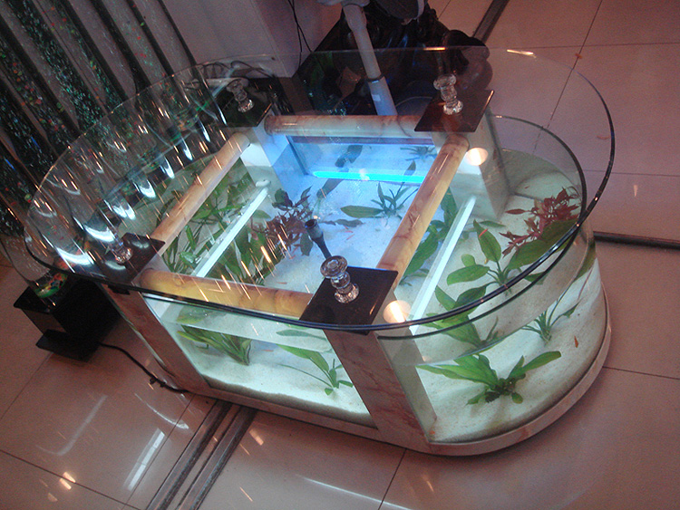 table basse salon aquarium. Black Bedroom Furniture Sets. Home Design Ideas