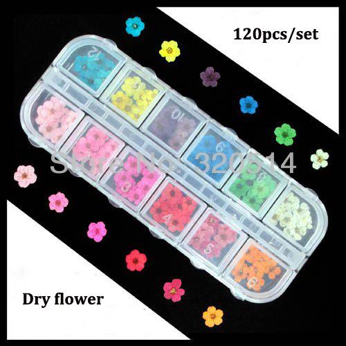 Original 120pcs/set Multi-colors Natural Press Real Dry Flower For Nail Art Decoration Cell Phone DIY Resin Decor Free Shipping(China (Mainland))
