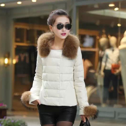 2014 Autumn and winter new South Korean style of sweet fur collar womens jacket, thick and long sections Slim jacket SDC29Одежда и ак�е��уары<br><br><br>Aliexpress