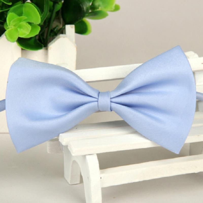 brand gravata corbatas pajaritas hombre Lake Blue man Pet Polyester silk Bow ties LYY4724 marca noeud