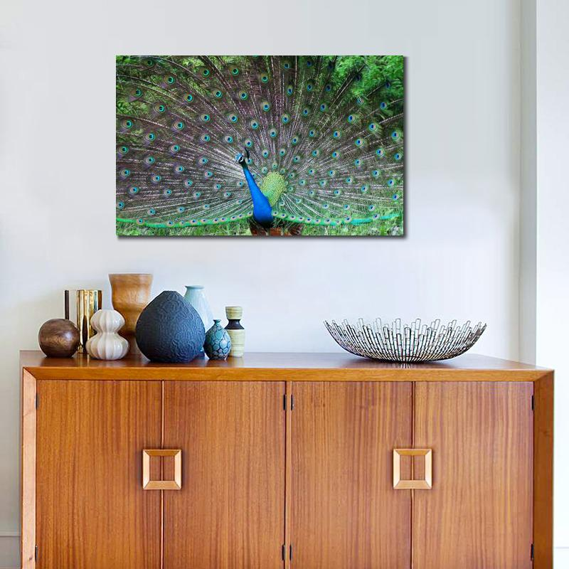 peacock tail male patterns posture Poster Print Animals Birds Wall Picture(China (Mainland))