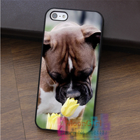 Boxer Dog Puppy Puppies 8 fashion cell phone case for iphone 4 4s 5 5s 5c SE 6 6s & 6 plus & 6s plus #EF072
