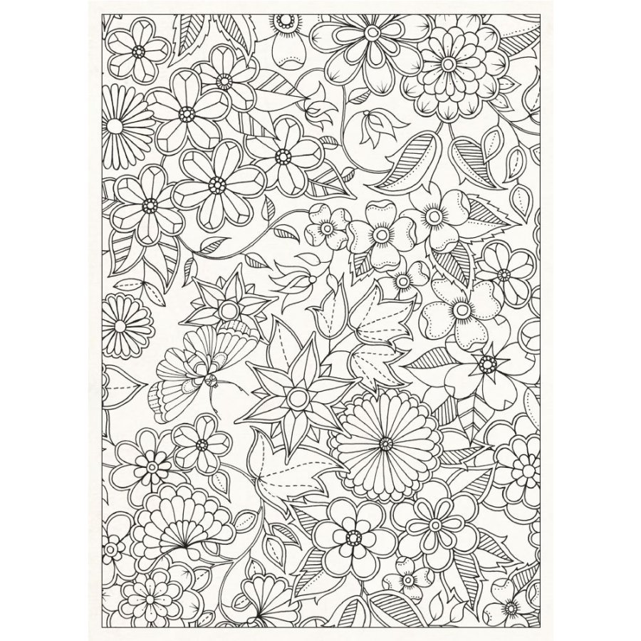 1000 Images About Coloring Books For Grown Ups On