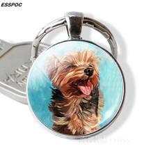 Encantador llavero de perro lindo perro foto de cristal colgante de cúpula de Metal de plata llavero amantes de perros regalos hombres mujeres joyería de moda regalos(China)
