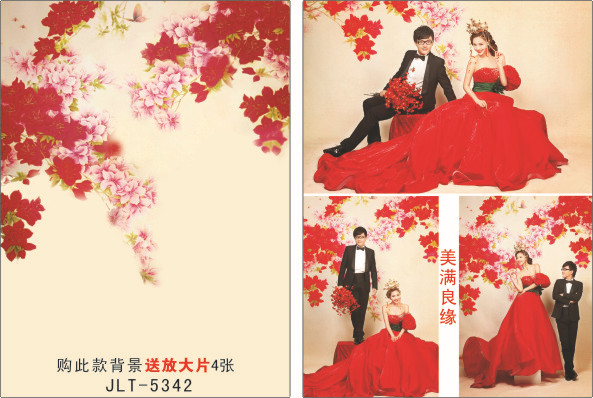 200cm*300cm Vinyl Backdrops for Photography Wedding Photo  Background Studio Prop JL-5342 от Aliexpress INT