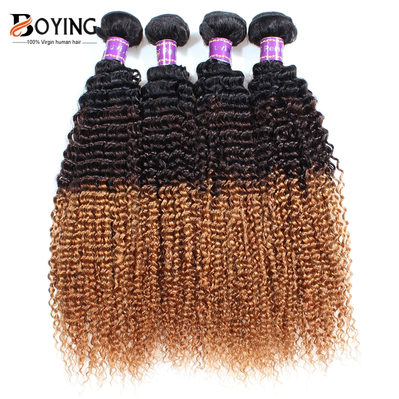 Virgin Brazilian Afro Kinky Curly Hair 4Pcs Grade 7A Unprocessed Brazillian Virgin Hair Kinky Curly Afro Kinky Curly Virgin Hair