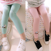Baby Kid Girl Cotton Pants Embroidery Bird Warm Stretchy Leggings Trousers Free Shipping