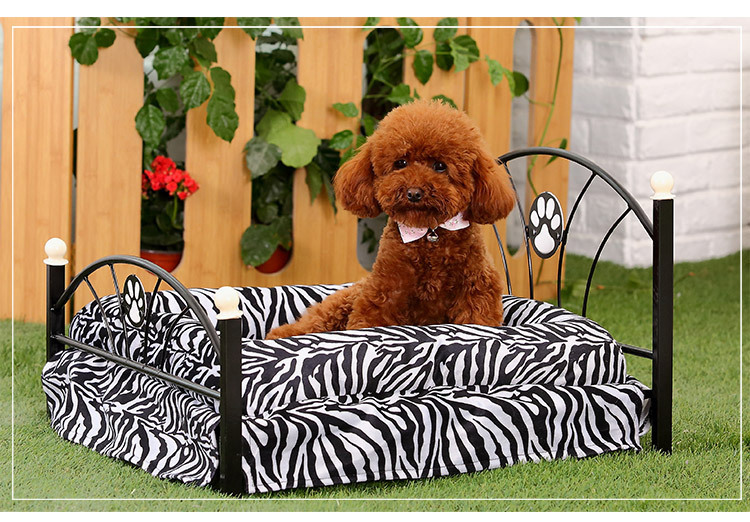Pet, wrought iron bed teddy cat luxury pet bed, dog kennel dog bed is wet with pad(China (Mainland))