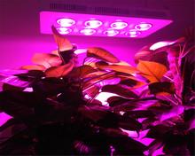 2016 High Efficiency Led Grow Light, 100W 200W 300W 400W 600W 800W Integrated Cob Led Grow Light for flower(China (Mainland))