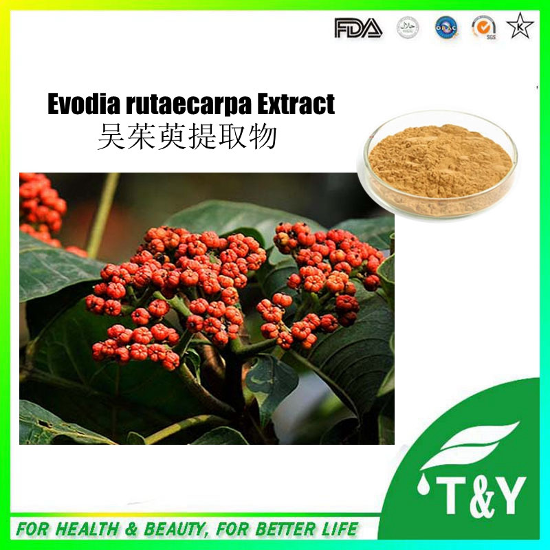 High quality Evodia rutaecarpa fruit Extract to promote function of sex hormone 800g/lot<br><br>Aliexpress