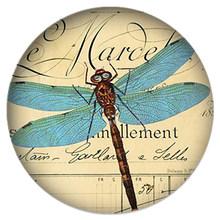 Zdying Vintage Dragonfly Bulat Kaca Cabochon Manik-manik Demo Datar Kembali Membuat Perhiasan Temuan untuk Kalung Gantungan Kunci Bros DN005(China)
