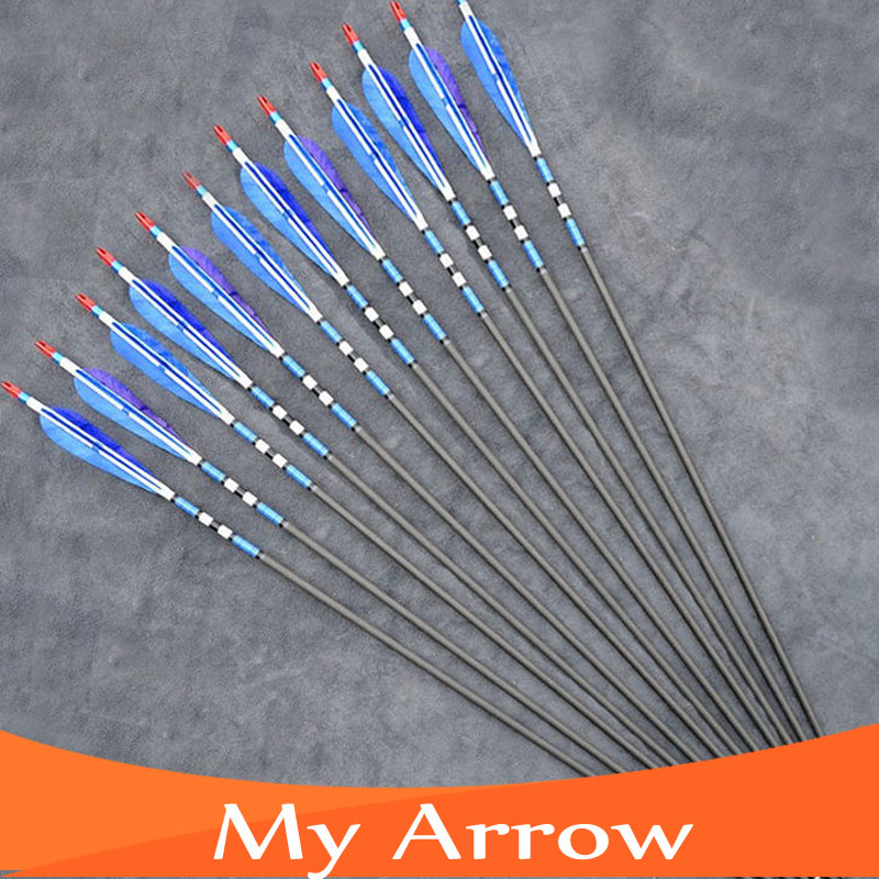 80cm Length 12pcs lot Blue Turkey Feather Carbon Arrows With Iron Arrowhead Shooting Archery Arrows For