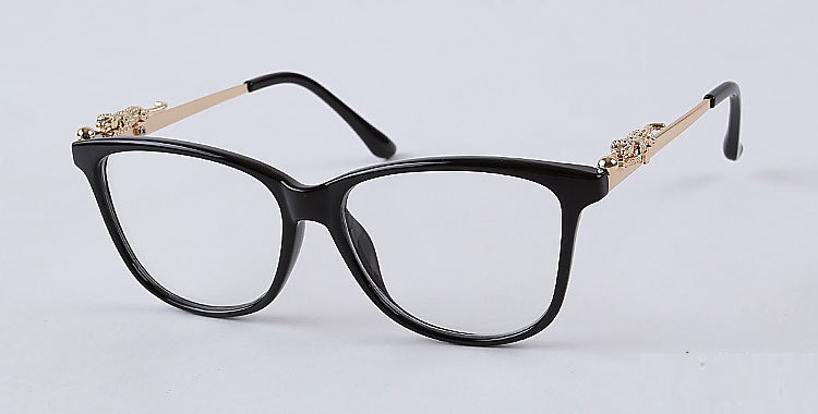 Eyeglasses Stylish Frames : C064 Picture - More Detailed Picture about Luxuary ...