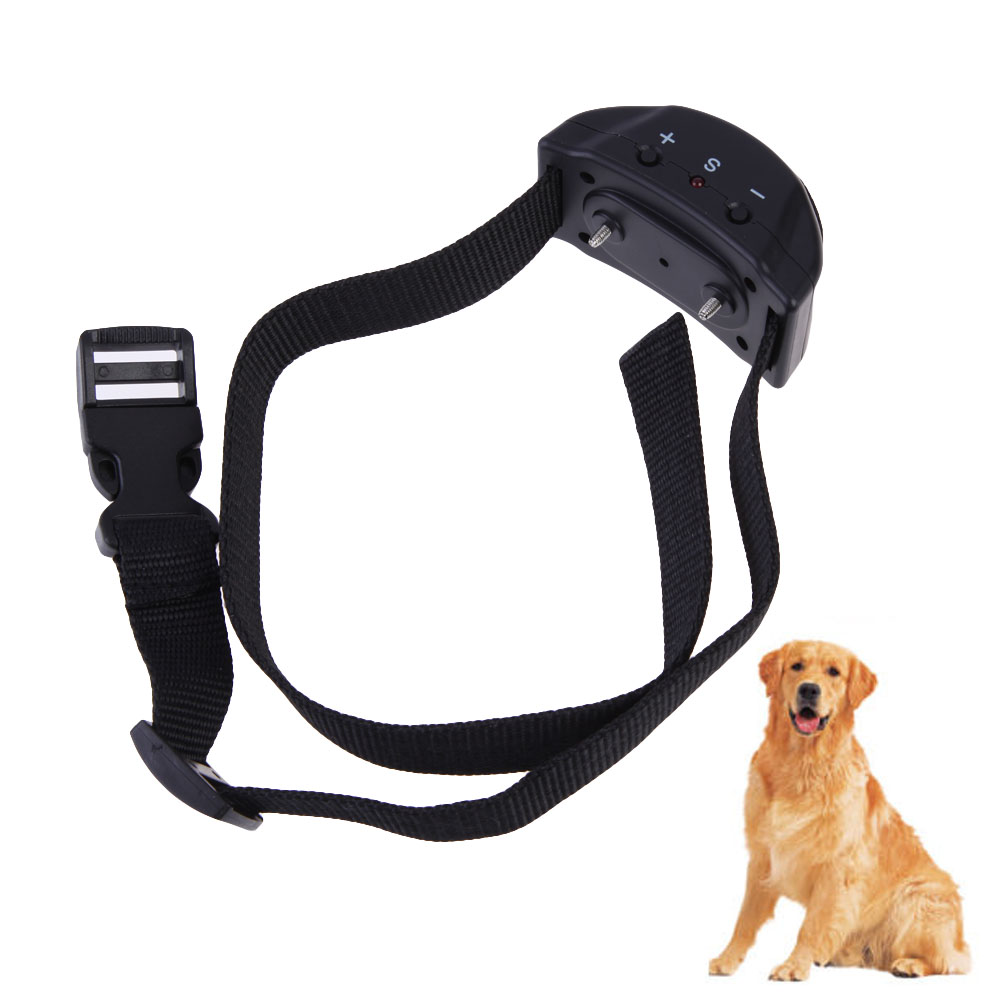 Bark Collar Small Dogs Reviews