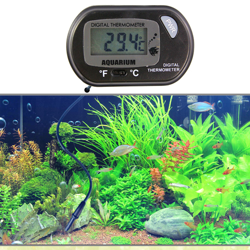 Buy lcd digital aquarium sensor for Fish tank temperature