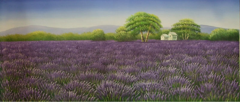 Hand Painted Canvas Painting Beautifulr Wall Painting Flower Lavender Field Scenery Wall Art Picture for Living Room(China (Mainland))