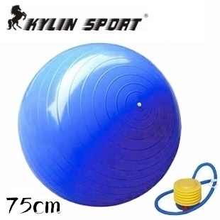 2015 Hot Selling GYM Yoga Pilates Fitness with Pump Exercise Ball Home Balance Train free Shipping(China (Mainland))