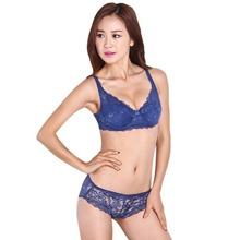 Women Push Up Underwire Padded Up Embroidery Lace Bra 32-40B Brassiere Bra T31