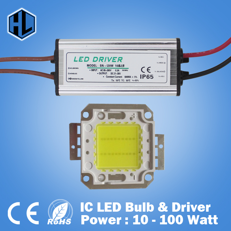 cheapest 10W 20W 30W 50W 100W COB High Power LED chip flood light chip+LED power supply driver floodlight ,street - HaoLiang Technology Lighting factory store