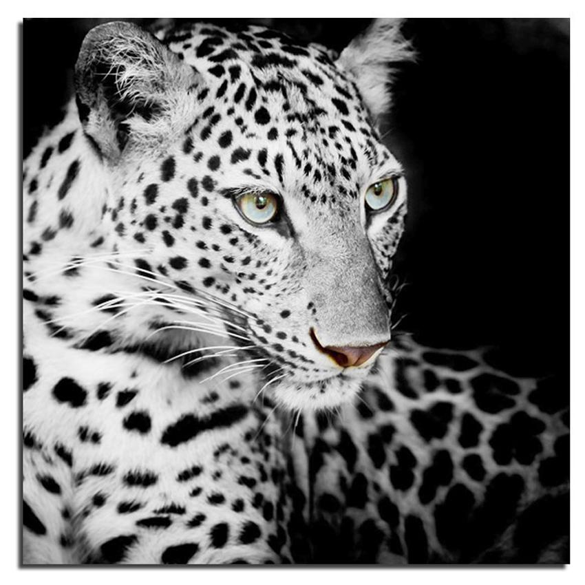 Promoci n de blanco leopardos compra blanco leopardos for Decoracion hogar leopardo