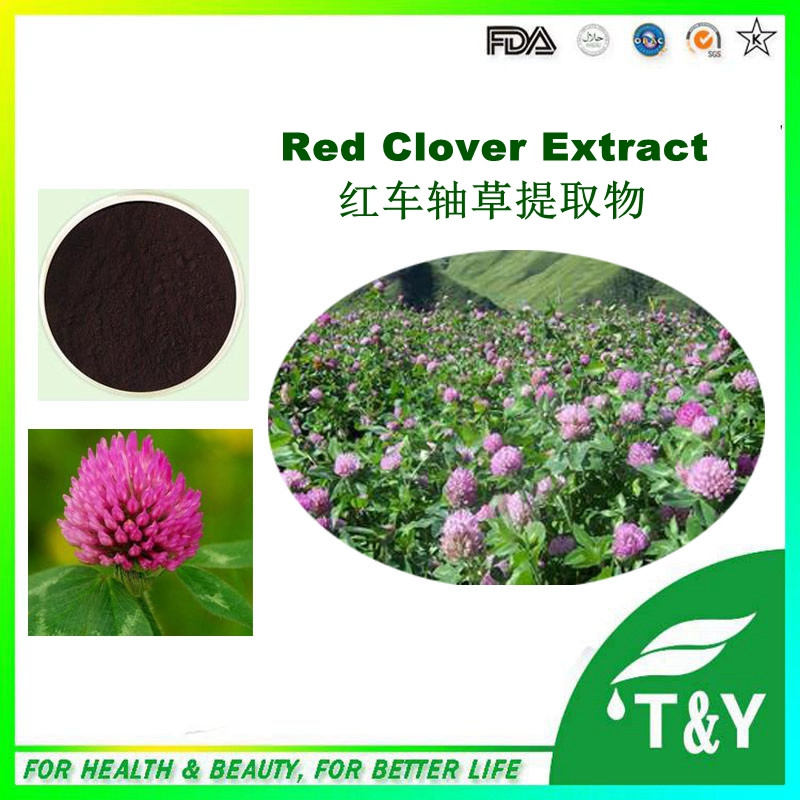 Natural health food  isoflavones/red clover extract with top quality 10:1 800g/lot<br><br>Aliexpress