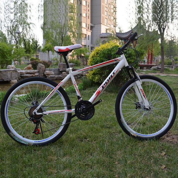 Hot!!! Mountain Bike 26 Inch Wheel 21 Speed Damping Integrated Bicycle Bikes For Men&Women Bicicleta Mountain Bike Free Shipping(China (Mainland))