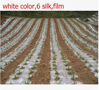 Free shipping,20 square 2x10M 6 silk,white color,Garden PE film flower greenhouse plastic mulch.plastico para invernadero(China (Mainland))
