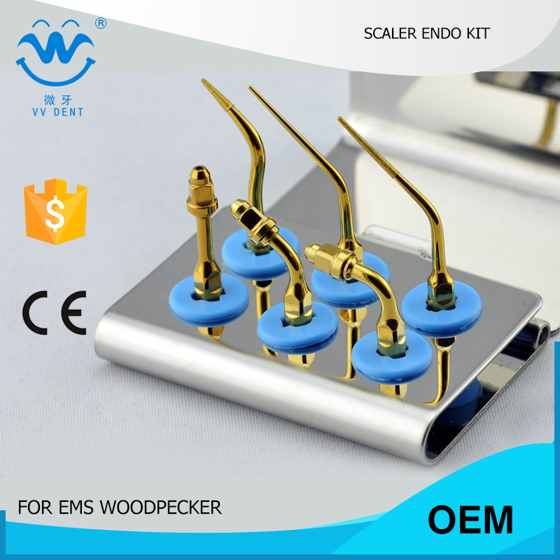 1set EEKG tips kit for ENDODONTIC cleaning and endodontic filling FIT EMS WOODPECKER MECTRON SYBRONENDO dental equipment(China (Mainland))