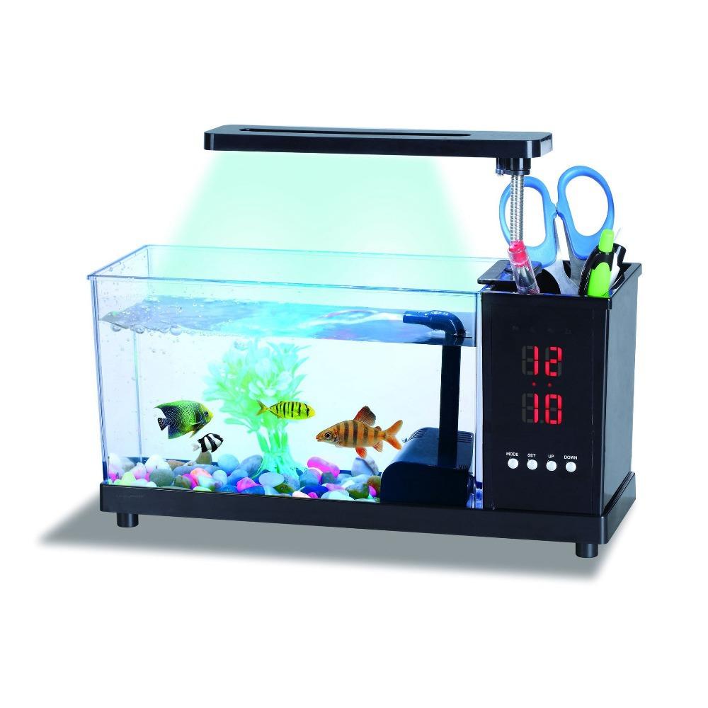 mini goldfish tank. Black Bedroom Furniture Sets. Home Design Ideas