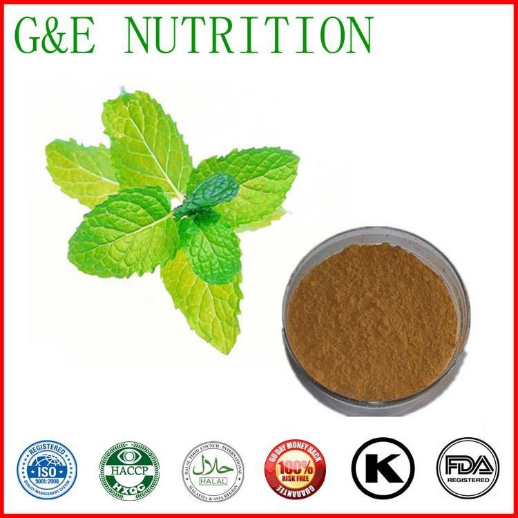 100% Natural 10:1 Wild mint P.E. PeppermintMint mint extract