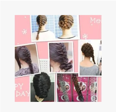 Beauty Health Hair Care Braiders French fashion hair braided hair braider DIY hair clip(China (Mainland))