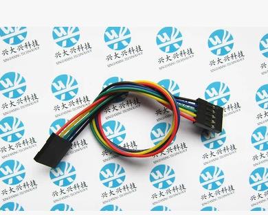 Free shipping, 100pcs/lot 5P Double-end Dupont Line 5P-5P 20cm