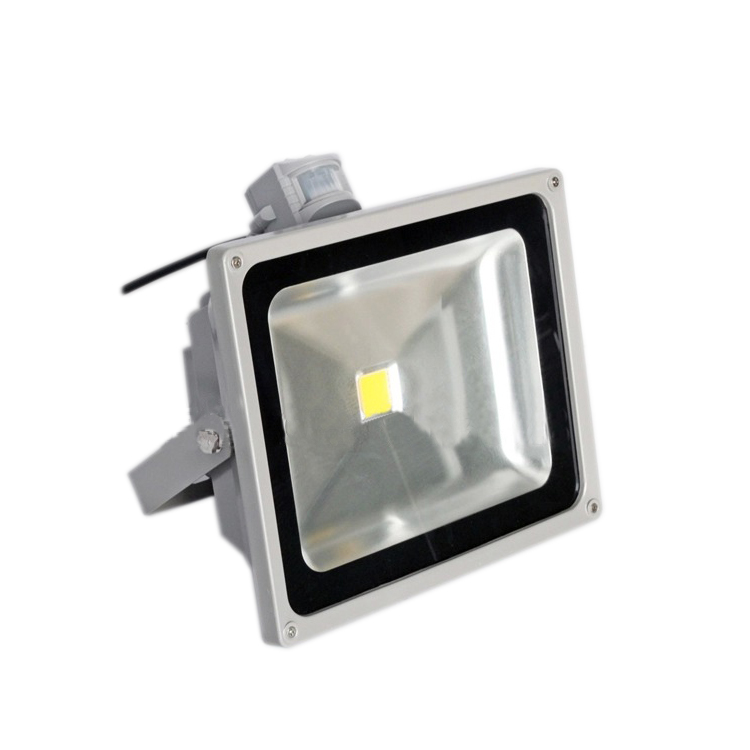 IP65 Outdoor Security Classic/Dusk Photocell PIR Sensor AC LED Flood Light 50W White with IR Remote Controller<br><br>Aliexpress