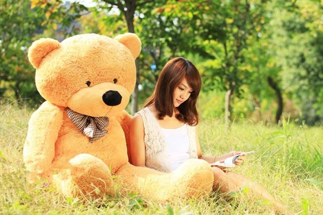 80cm teddy bear skin Factory price empty without the filler 4colors empty  Teddy bear plush toys coat Birthday gifts
