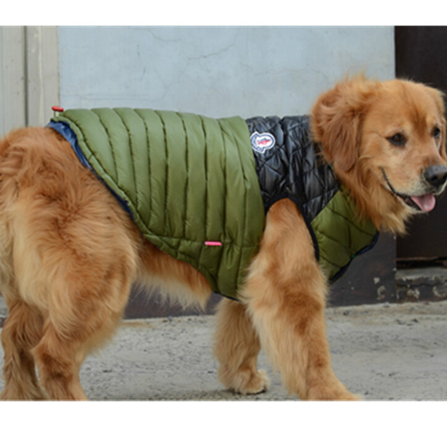 Big Dog Warm Jacket
