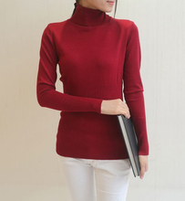 winter autumn women turtleneck sweater fashion Solid Cotton pullover slim Woman pullovers and sweaters female casual Design tops(China (Mainland))