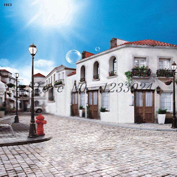 250cmx450cm sky building around the street background streetlights props backdrops for photography<br>
